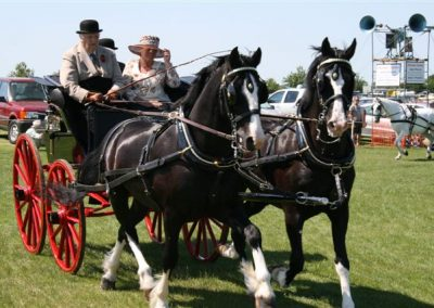 A horse-drawn cart with three passengers at Messingham Show
