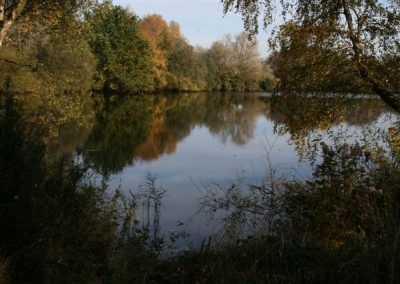 A lake surrounded by trees in a nature reserve near Messingham