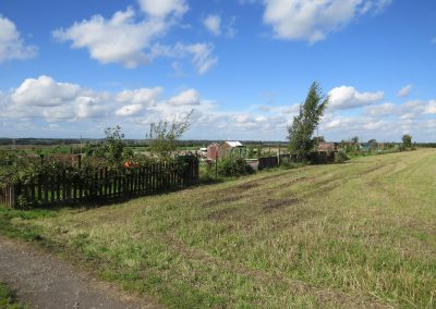 A view of a field next to the allotments in Messingham